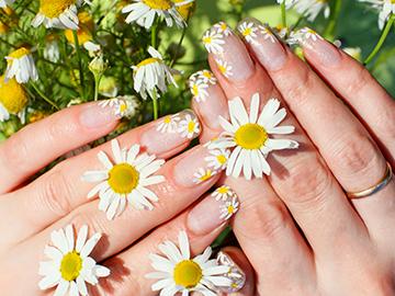 Nails Maintenance